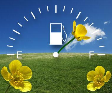 jauge a essence fleur biocarburant