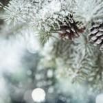 La consommation d'électricité française est sensible au froid