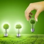 Quel est le rôle de RTE pour accompagner la croissance des énergies renouvelables?