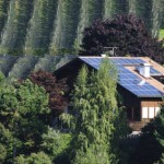 Installation de panneaux solaires: prenez garde aux arbres
