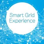 Le premier smart grid français