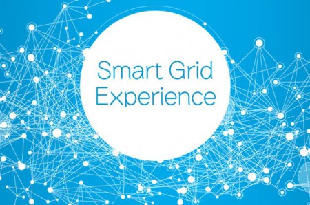 smart grid experience