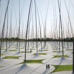 Windstalk : des roseaux géants qui produisent de l'électricité